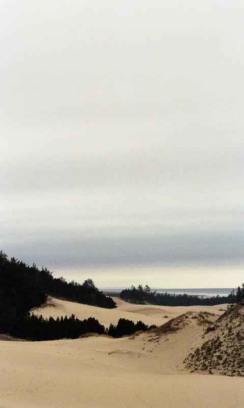 Oregon 1a
